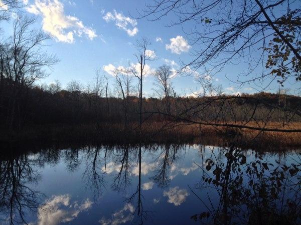 infertility quiz   pond and sky resized 600