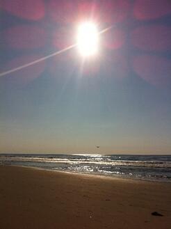 Sun and winter beach