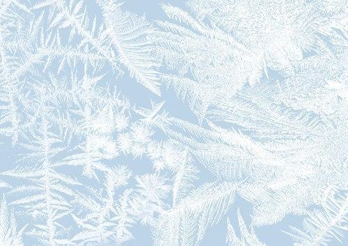 Fertility Program Updates Due to Snow