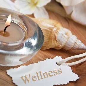 wellness in fertility treatment