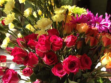 flowers for infertility apologies and gratitude