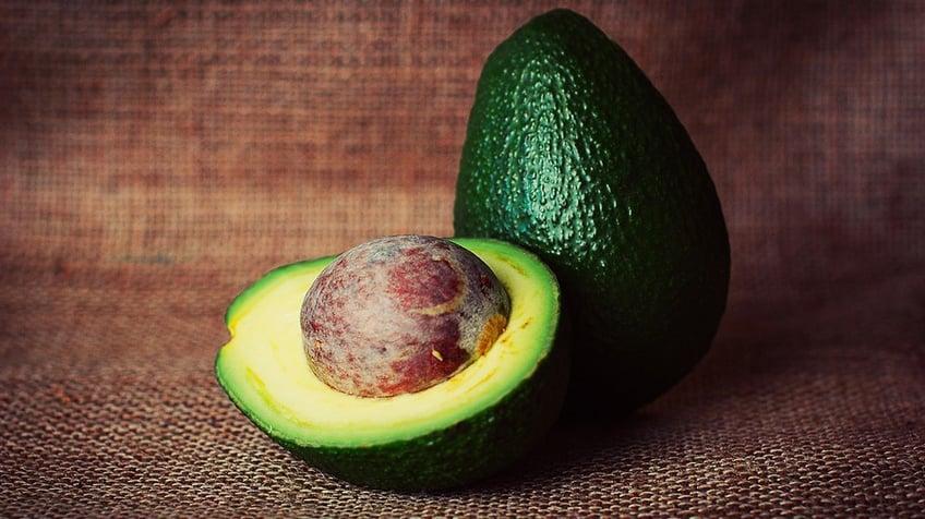 Fertility Foods for Women's Health | The Avocado