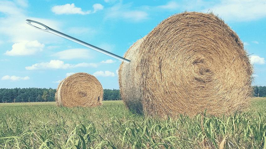 needle_in_haystack.png